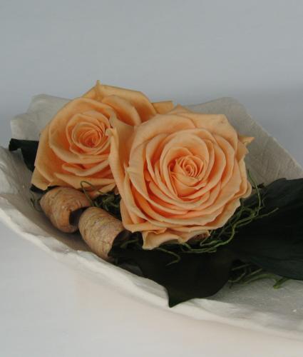 Konservierte, haltbare Rosenköpfe, 6 Stück, apricot